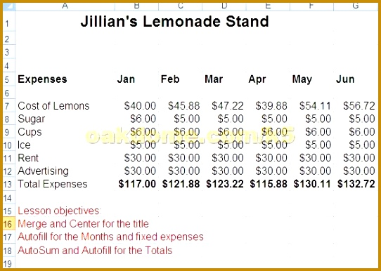 Lemonade stand business plan template 01473 72 hour dropshipping lemonade stand business plan template 05709 lemonade stand business plan template 28 images lemonade stand 386542 flashek Images