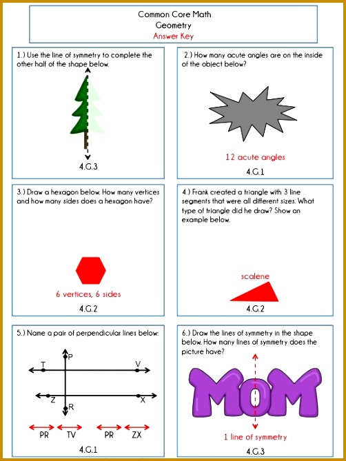 4th Grade mon Core Math Review or Homework Problems Geometry 669502