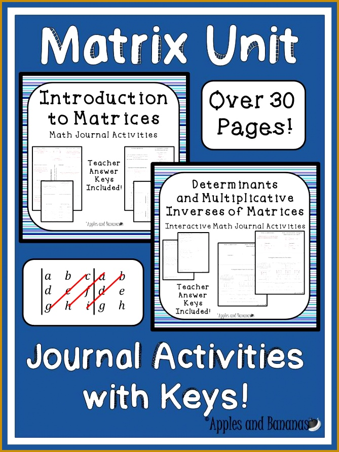 Two best selling matrix bundles in one Introduction to Matrices and Determinants & Multiplicative 892669