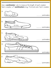 Shoe Measurement 291219