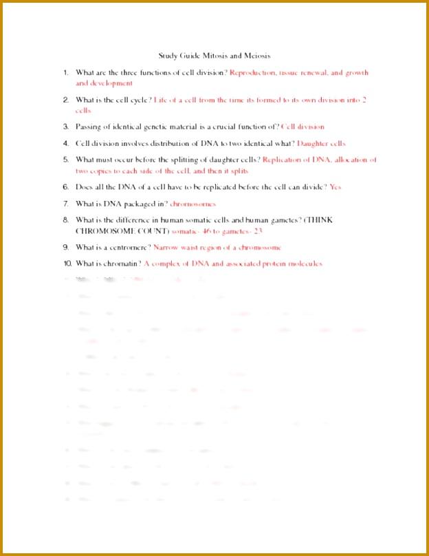Meiosis Review Worksheet Source · Mitosis Vs Meiosis Worksheet Answers Homeschooldressage 808624
