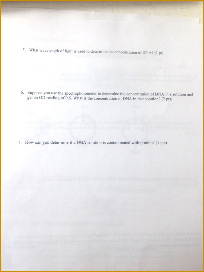 4 Mendelian Genetics Worksheet Answer Key | FabTemplatez