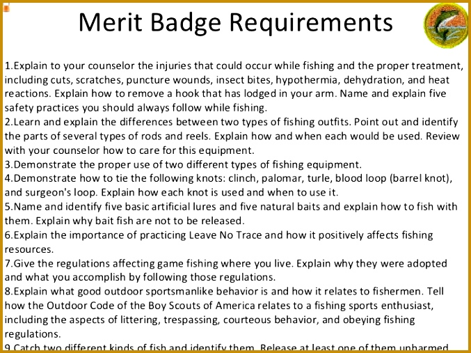 Merit Badge Requirements ul li Explain to your counselor the injuries that 507677