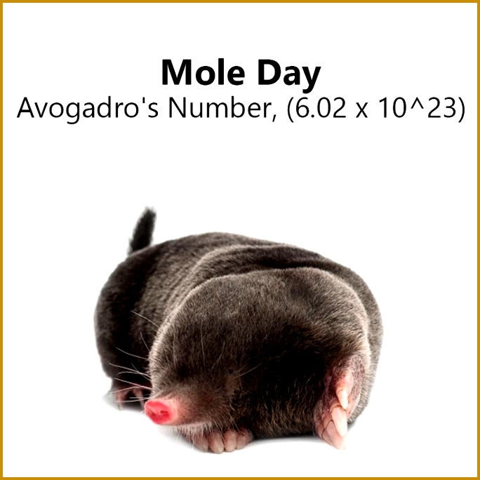 NationalMoleDay A mole is the atomic mass of a molecule in grams discovered by 684684