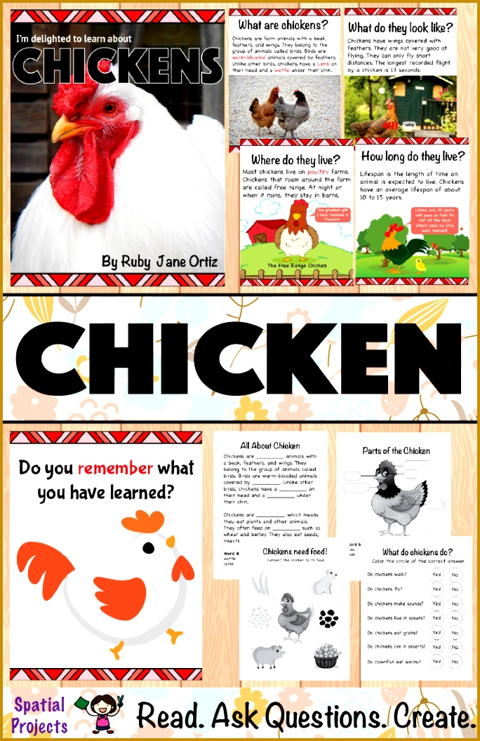 All About Chickens Nonfiction Unit Chicken Life Cycle 1056684