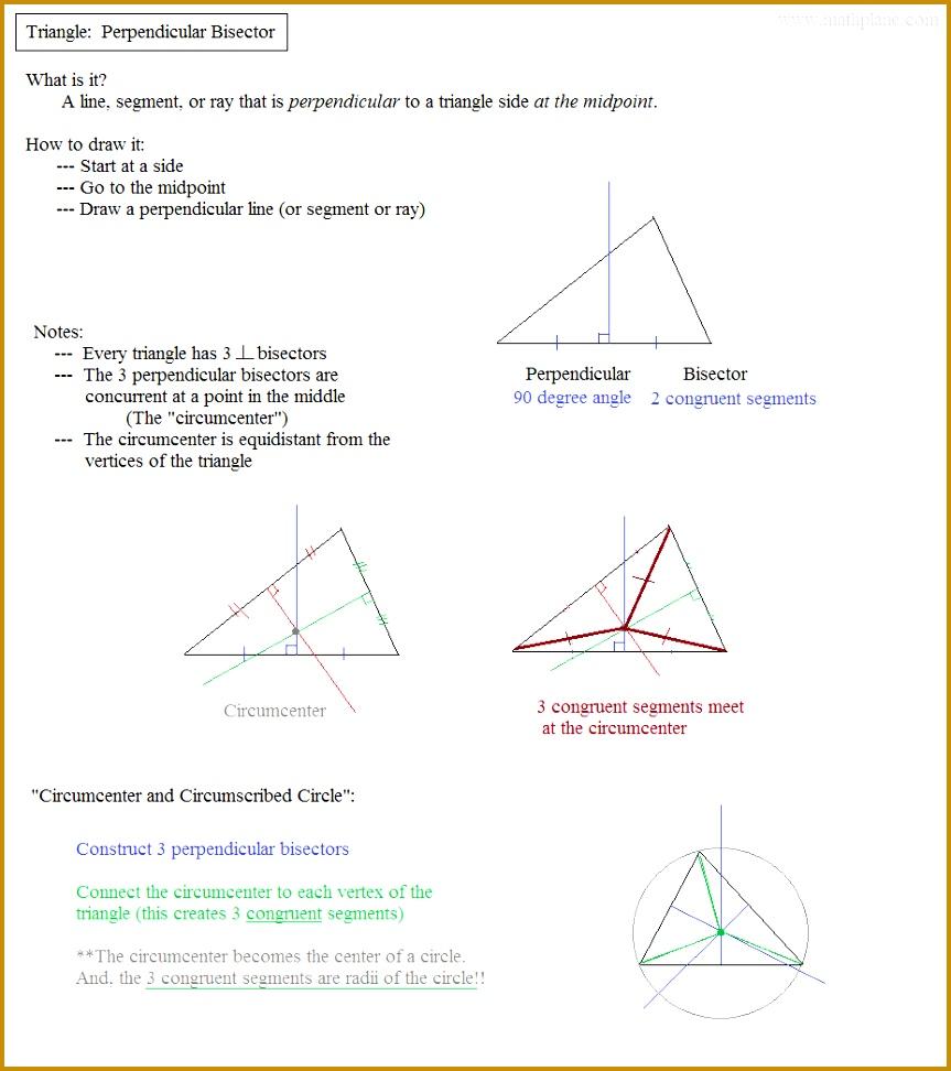 Angle Bisector Median Altitude Perpendicular Bisector 972863