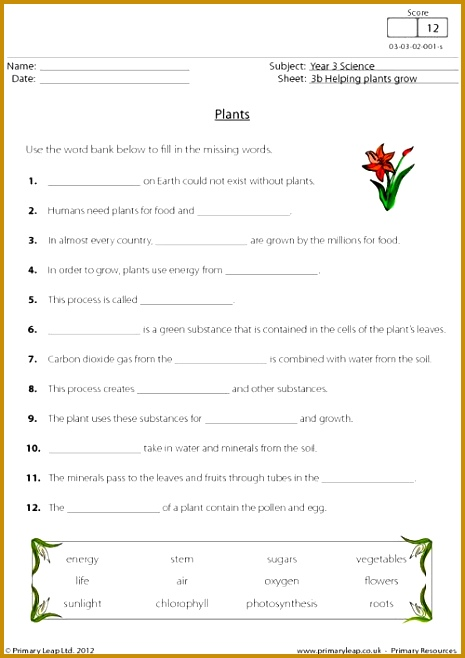 This worksheet describes the process of photosynthesis 658465