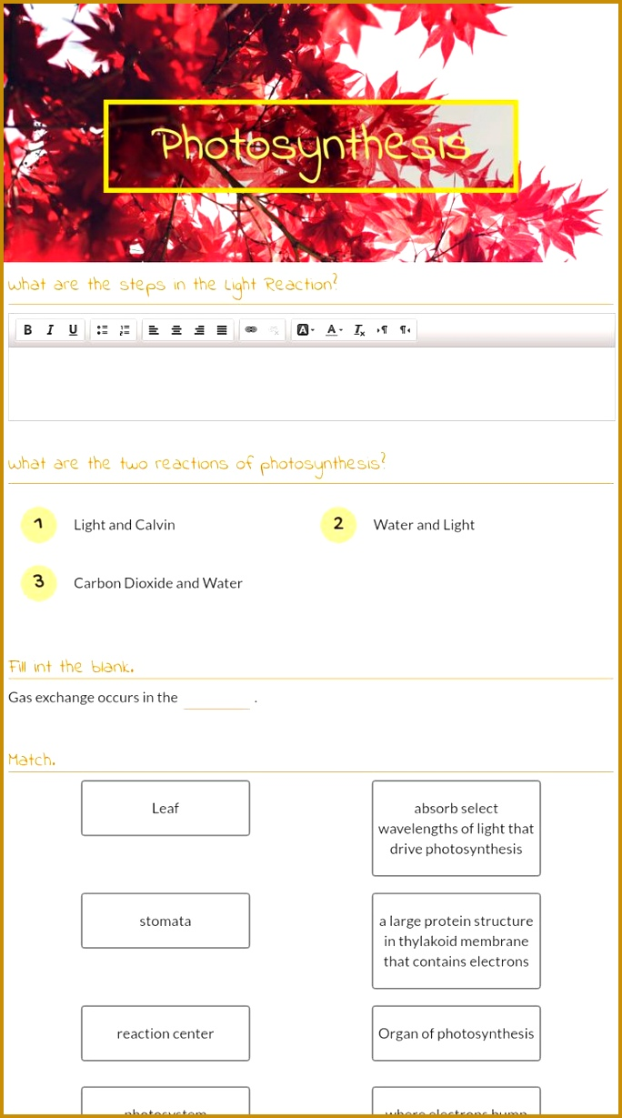 me free interactive Biology synthesis blended worksheet synthesis by teacher Akeah Allen 1229684