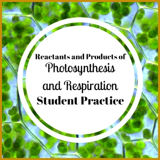 A quick worksheet to reinforce the definitions of reactants and products and to practice finding them 325325