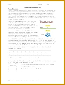 3 Protein Synthesis Worksheet | FabTemplatez