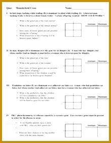 Monohybrid Quiz or Homework e Factor Genetics Problems 283219