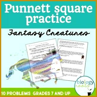 Genetics Punnett Square Practice Worksheet 325325