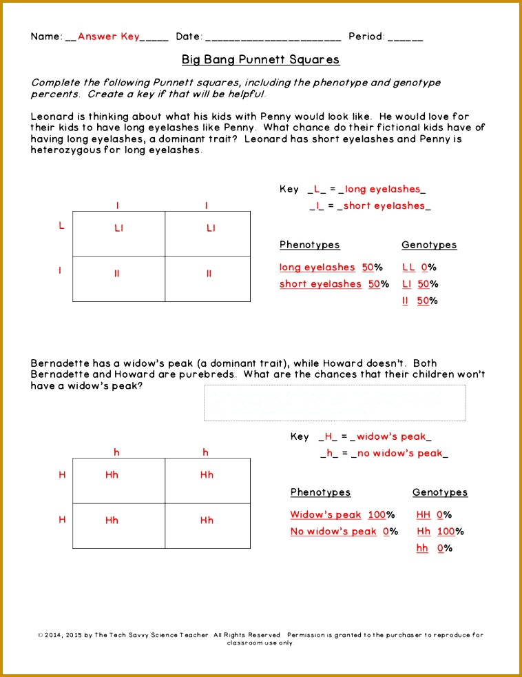 Punnett Square Practice Worksheet With Answers Worksheets for all Download and Worksheets 758982