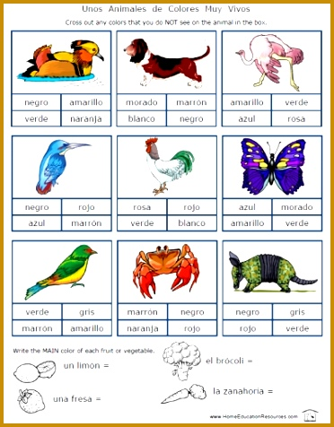 Spanish Color Worksheets for Beginners 476372