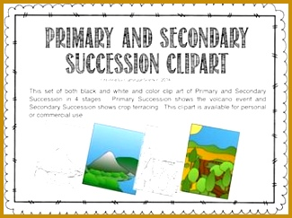 Primary and Secondary Succession Clipart 243325