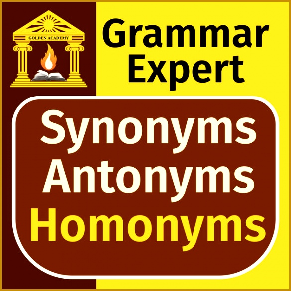 Grammar Expert Synonyms Antonyms and Homonyms FREE 585585