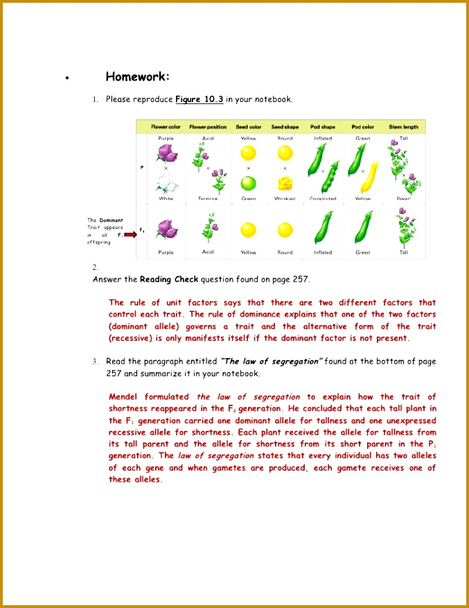 The Work Gregor Mendel Worksheet Answers 876677