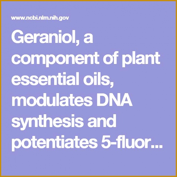 Geraniol a ponent of plant essential oils modulates DNA synthesis and potentiates 5 595595