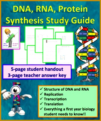 DNA RNA Protein Synthesis Worksheet Study Guide 403336