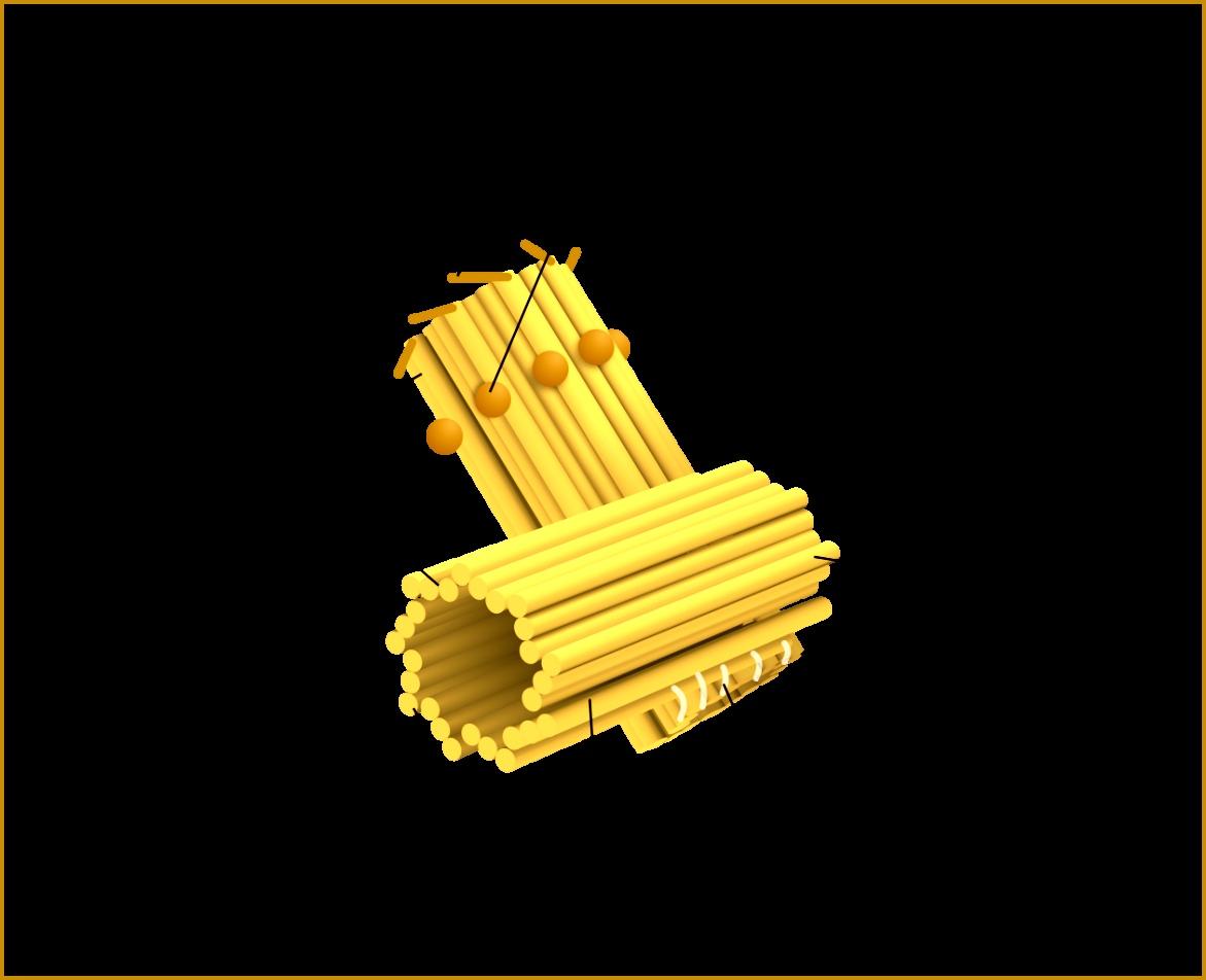 File Centriole eng 9521171