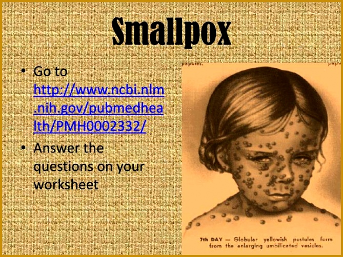 Go to Answer the questions on your worksheet 502669