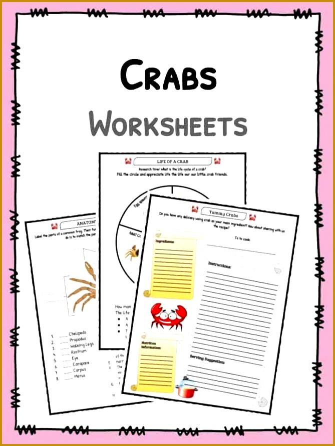 3 World War 1 Worksheets Fabtemplatez