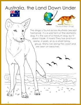 First Grade Life Science Animals Worksheets Dingo 361279