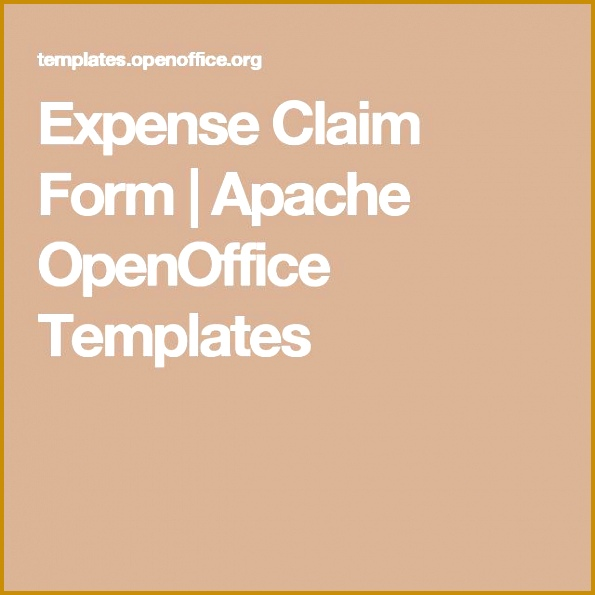 Expense Claim Form 595595