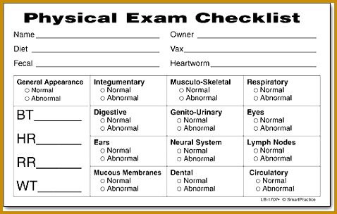Physical Exam Template Sample Templates Chief plaint History of Present Illness 304478