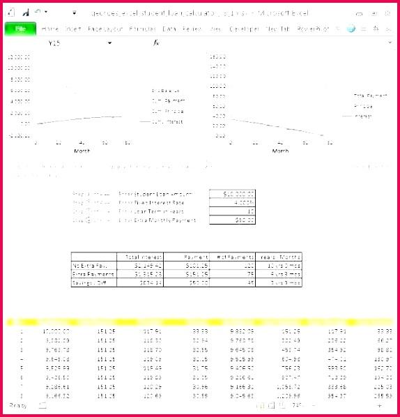 3 amortization calculator excel template 01693