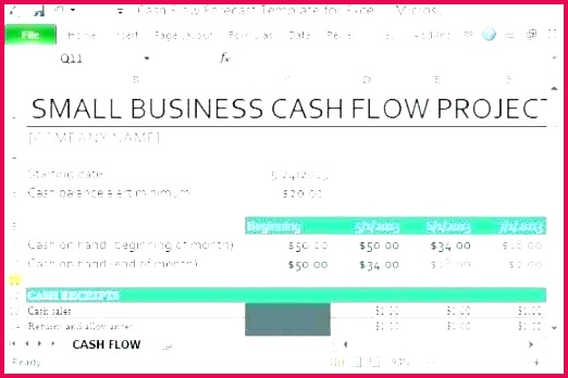 free cash flow forecast template excel cash flow template statement forecast free personal business fore personal
