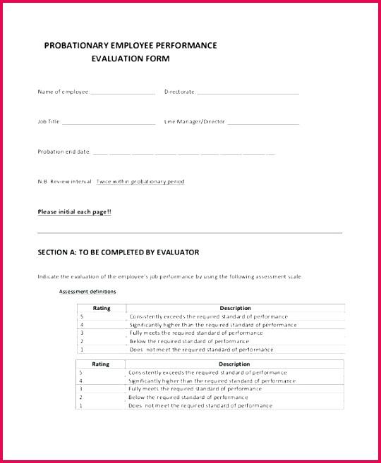 job application template new performance evaluation form free nz employee employment