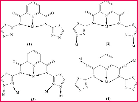 Financial Ratios Template Best 0d and 1d Pbii Plexes Constructed From Pyridyldicarboxamide by 65