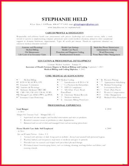 billing statement template model lovely artist statement template