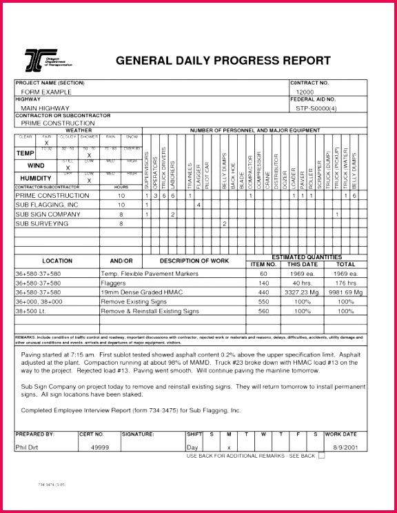 simple daily report format