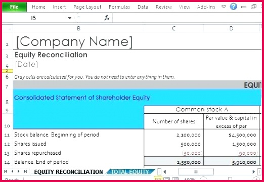 shareholder equity report template for excel reconciliation
