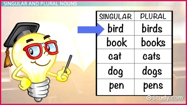 """Singular & Plural Nouns Lesson for Kids """""""