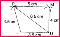 CBSE NCERT Syllabus Important Class VI Mathematics Questions and Answers