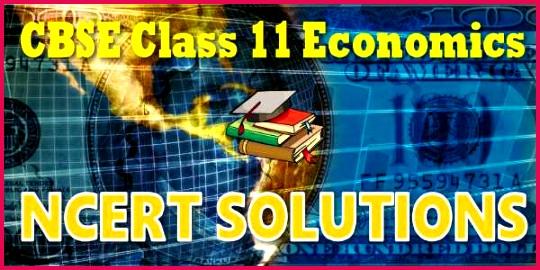 11 economics ncert solutions