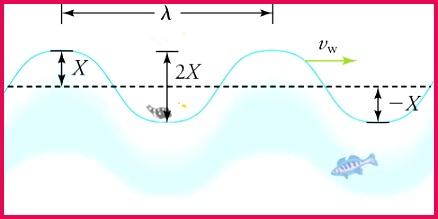 A seagull bobs up and down on a sinusoidal shaped periodic ocean wave with a