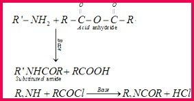 Amines Class 12 Notes Chemistry