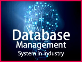Database Management System in Industry