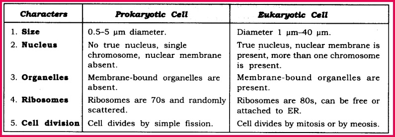 NCERT Solutions For Class 9 Science Chapter 5 The Fundamental Unit of Life 10