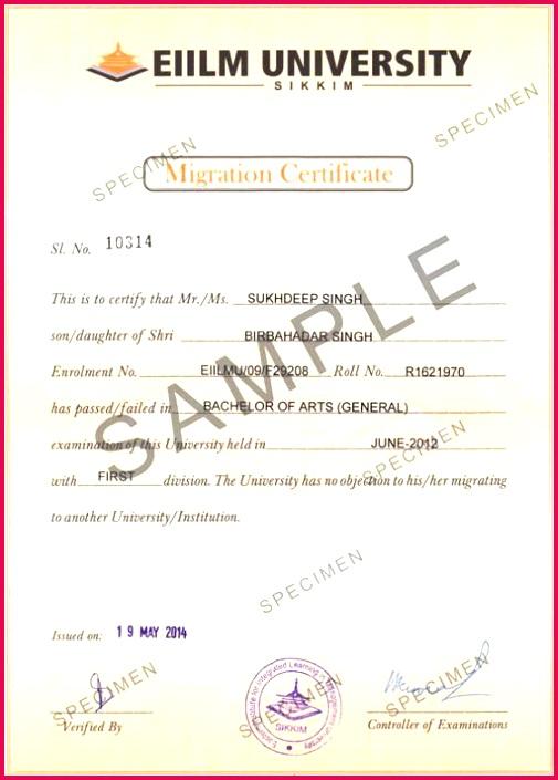 EIILM University Degree Certificate Sample 3