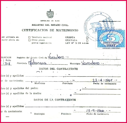 5 Birth Certificate Translation Template Free 67622