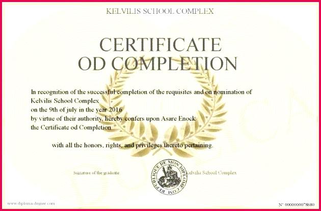 Download Pletion Certificate Template Certificate Od Pletion Drug Rehab Professional