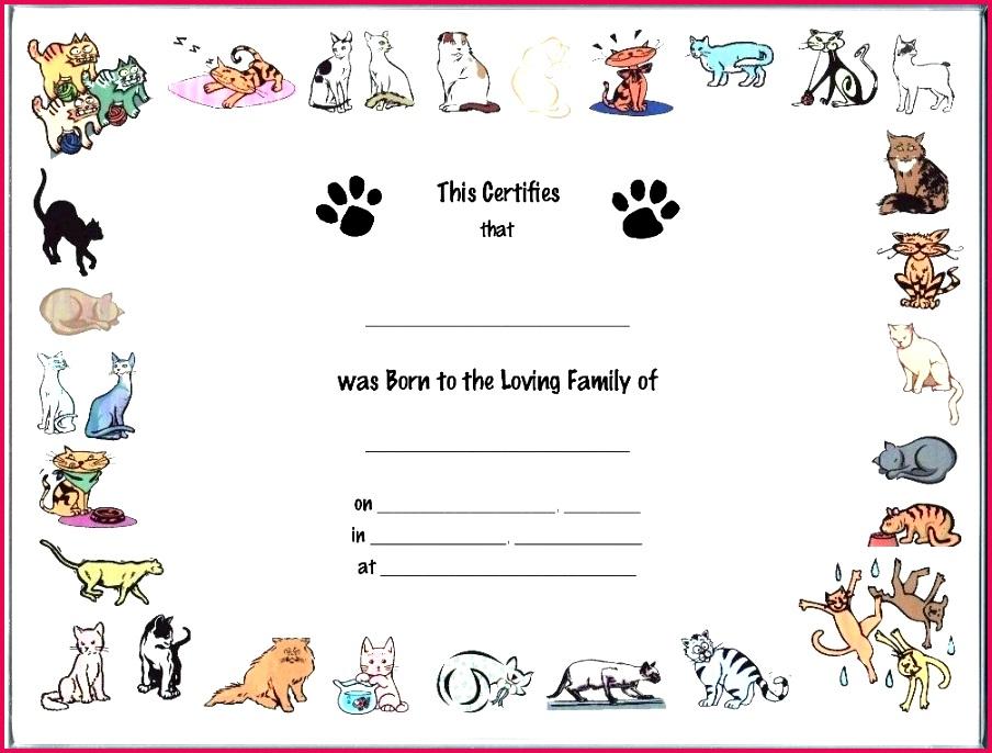 cat birth certificate template printable editable blank louisiana