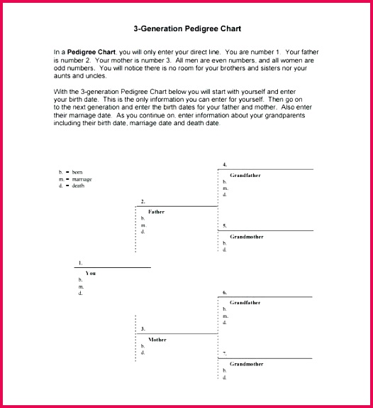 pedigree chart templates doc excel free premium generation template cat maker