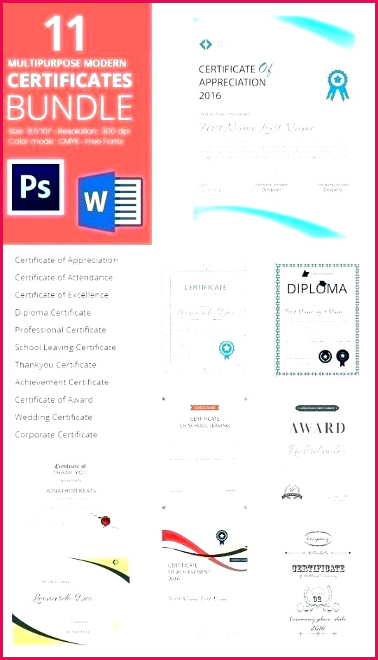 lovely word t certificate template free appreciation templates for sports certificates professional fre