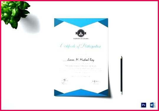 sample certificate of participation template microsoft templates publisher award free